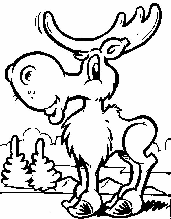 Moose Drawing Cute Cute Moose Colouring Pages